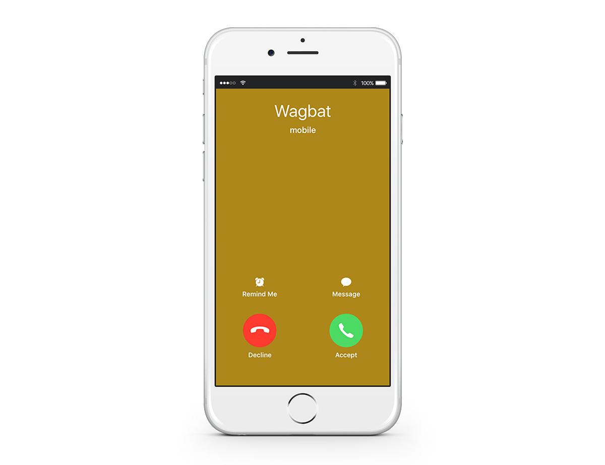 wagbat-register-12.jpg#asset:9330